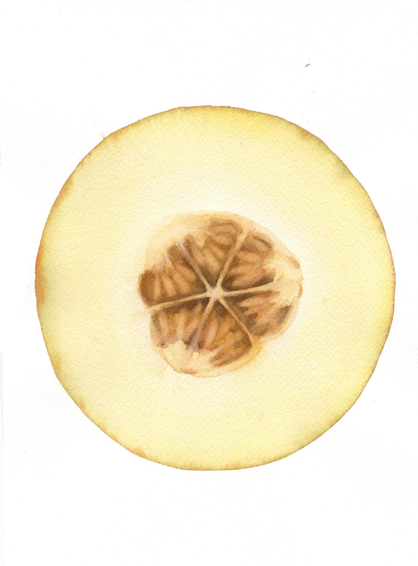 melón amarillo